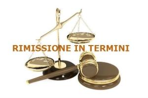 Rimessione in termini applicabile al processo tributario – Cassazione sentenza n. 1486 del 2017