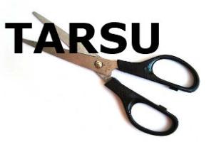 TARSU riduzione dell'importo da pagare in presenza di disservizi – Cassazione sentenza n. 22531